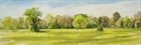 Cowslips on Thicket Meadow by Sarah Luton, Painting, Oil on canvas